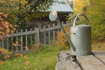 Gartenbau | © Christine Riel